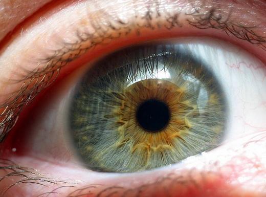 Карие глаза на самом деле голубые - а вы знали?