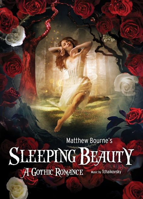 Sleeping Beauty - New Adventures