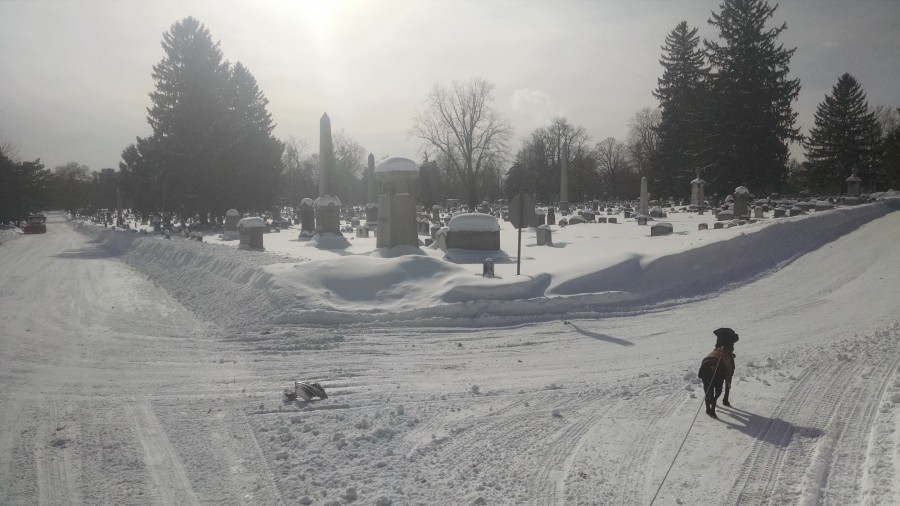 winter graveyard 4