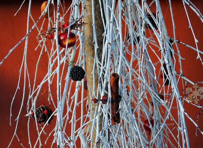 Великолепные фото зимней Риги1