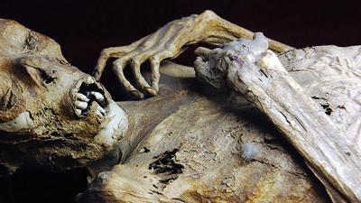 Сестры полтора года жили с мумией своего брата