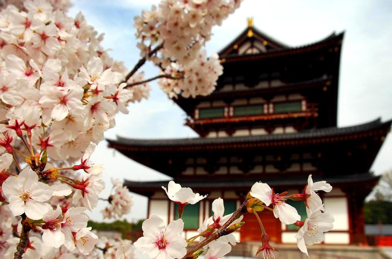 30 пословиц и поговорок в которых вся мудрость востока3