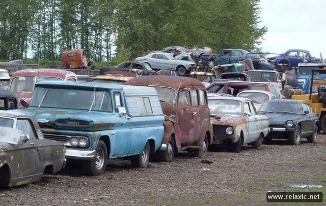car-cemetery_088