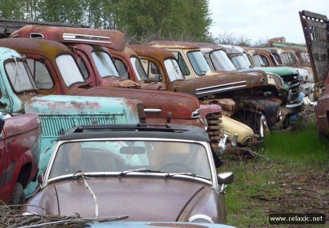 car-cemetery_094