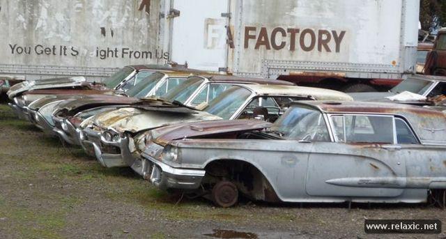 car-cemetery_099