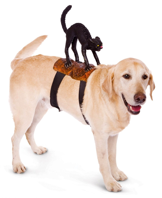 1348746791_hw-for-dogs-1