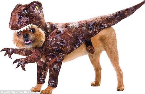 Animal-Planet-costumes-1