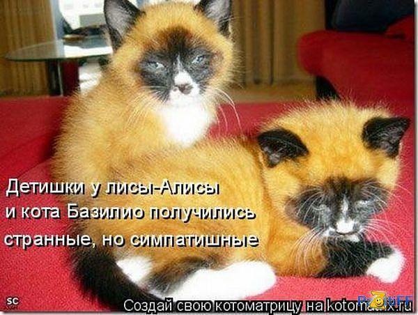 fotopodborka_sredy_129_foto_21.jpg