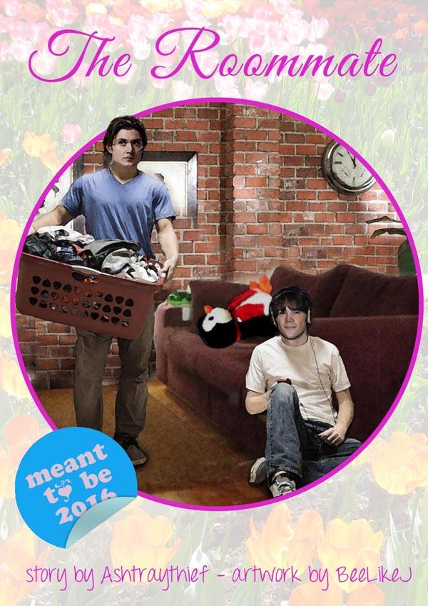 Roommate cover Laundry.jpg