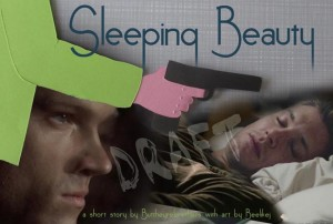set up Banner Sleeping Beauty.jpg