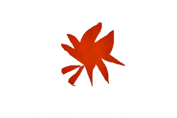 Флаг Чечни.jpg