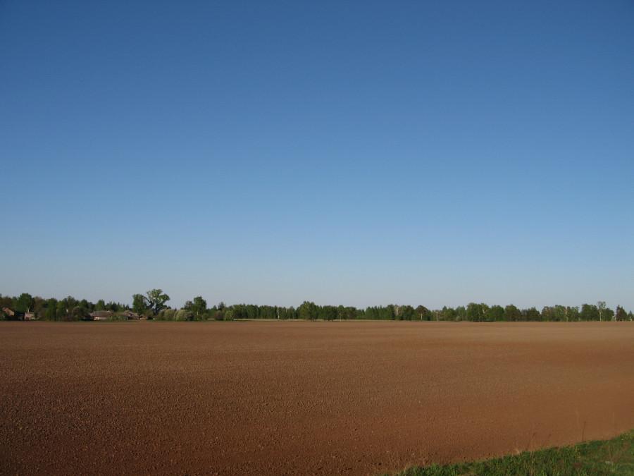 2018 05 21 Тушка поле (3).JPG