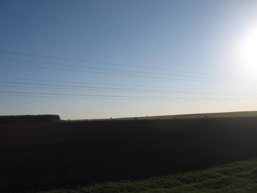 2018 05 21 Тушка поле (9).JPG