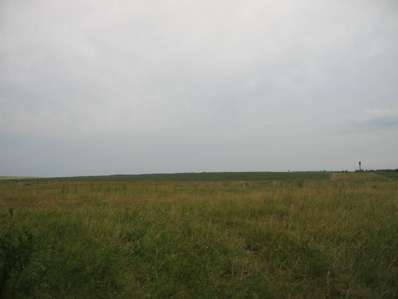 2019 07 12 Аэродром (9).JPG