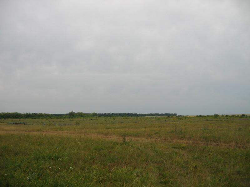 2019 07 12 Аэродром (10).JPG
