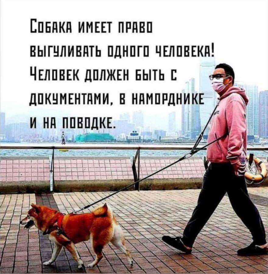О правах животных.jpg