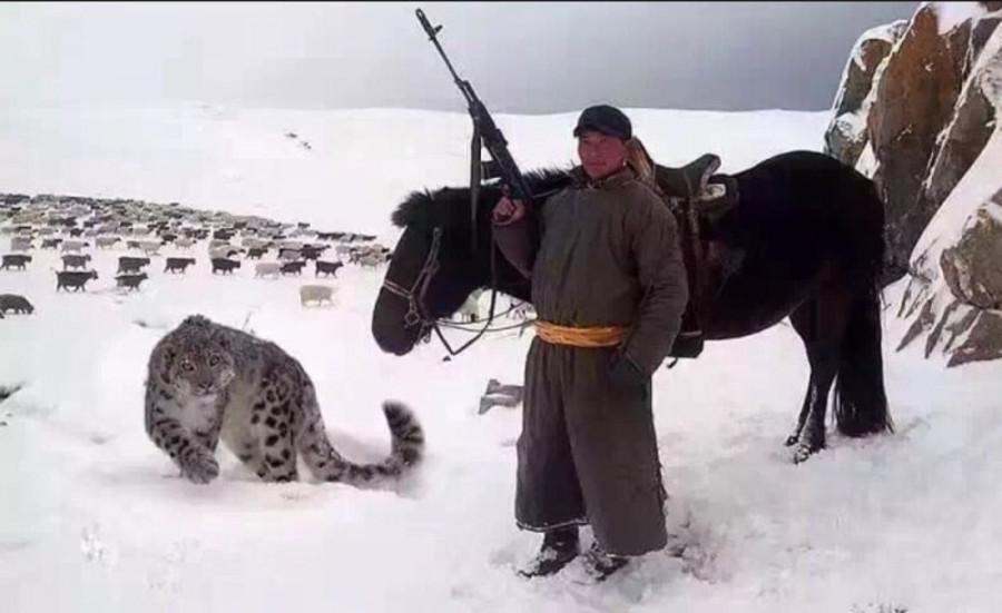 Пастух и его кошечка.jpg