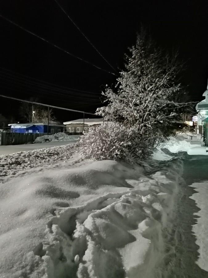 2021 01 11 Зима.jpg