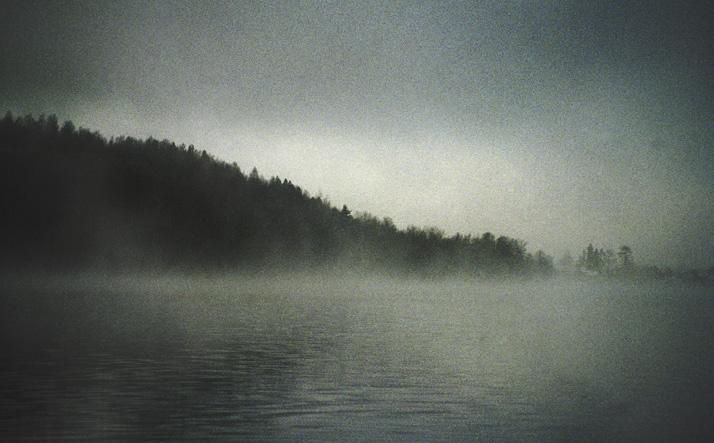 зихново-туман с права