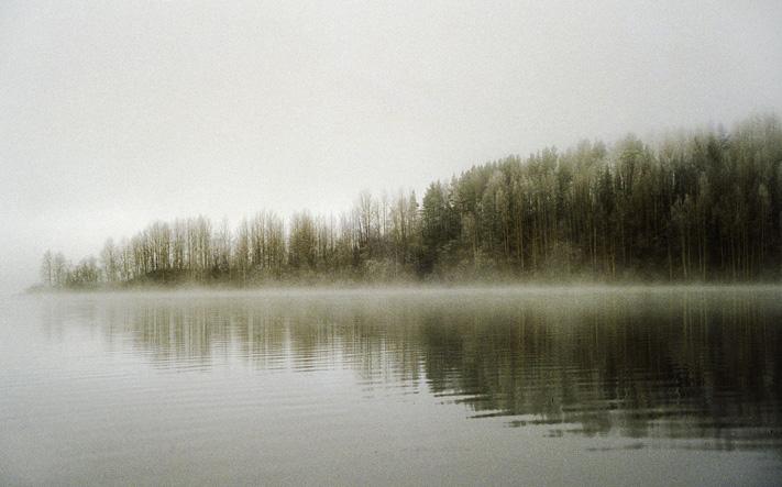 зихново-туман слева
