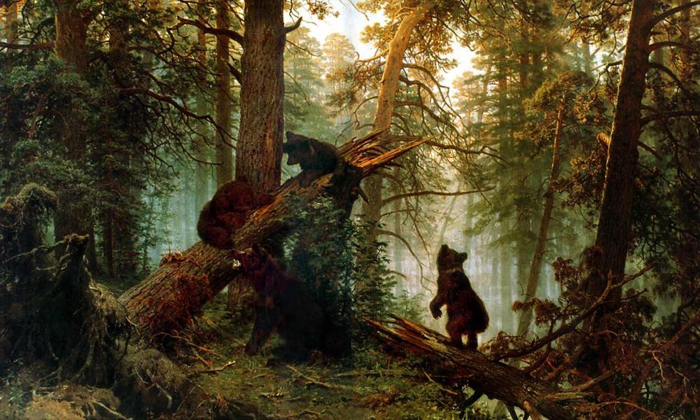 4765078_Utro_v_sosnovom_lesu