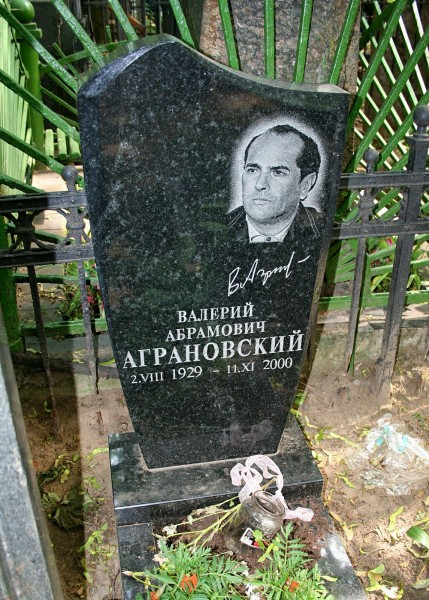 agranovsky_va