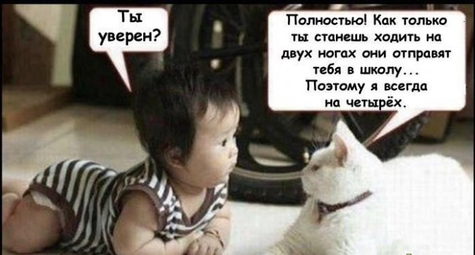 http://ic.pics.livejournal.com/belan_olga/24104446/893457/900.jpg
