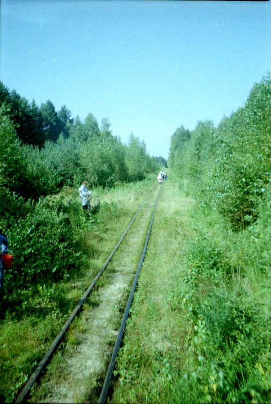 По ягоды, август 2004