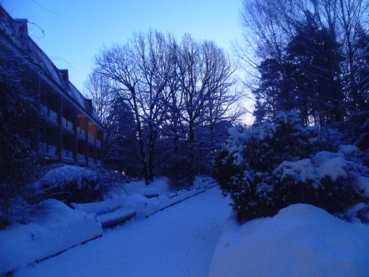 05 - Утро в санатории Переделкино