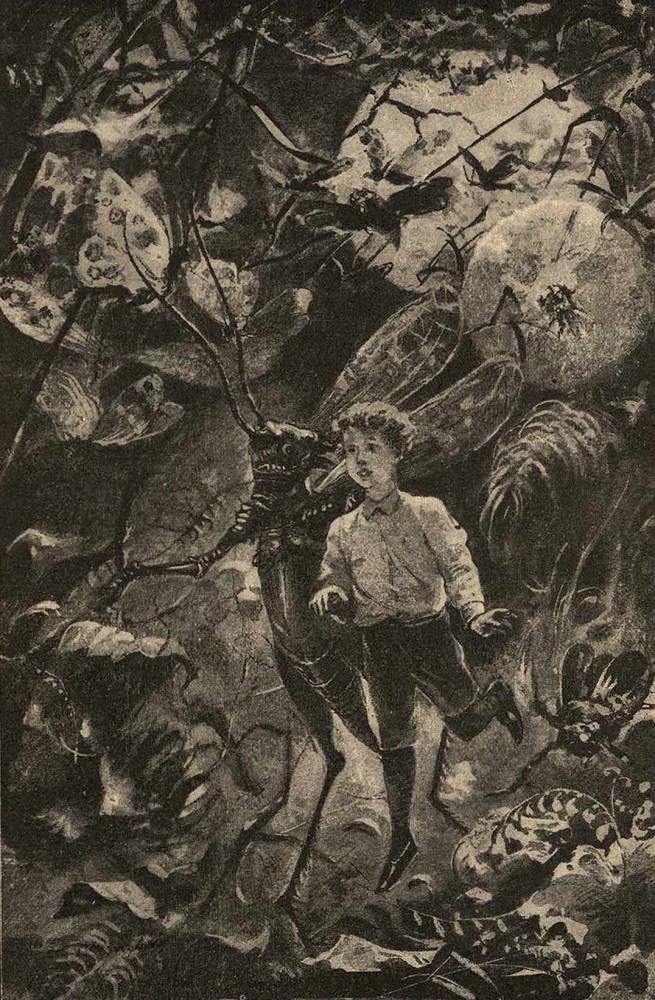 Иллюстрация из книги «Вешний цвет» (1911)