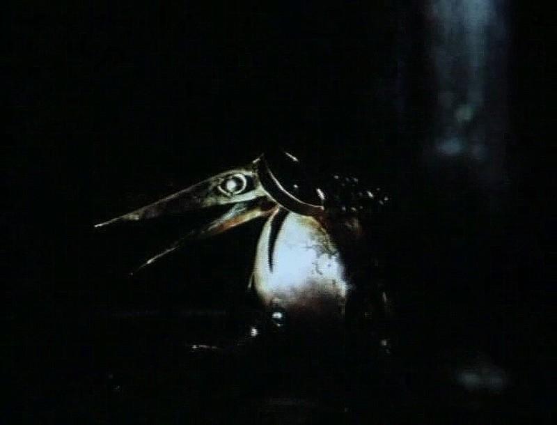 Цапля-Жаба