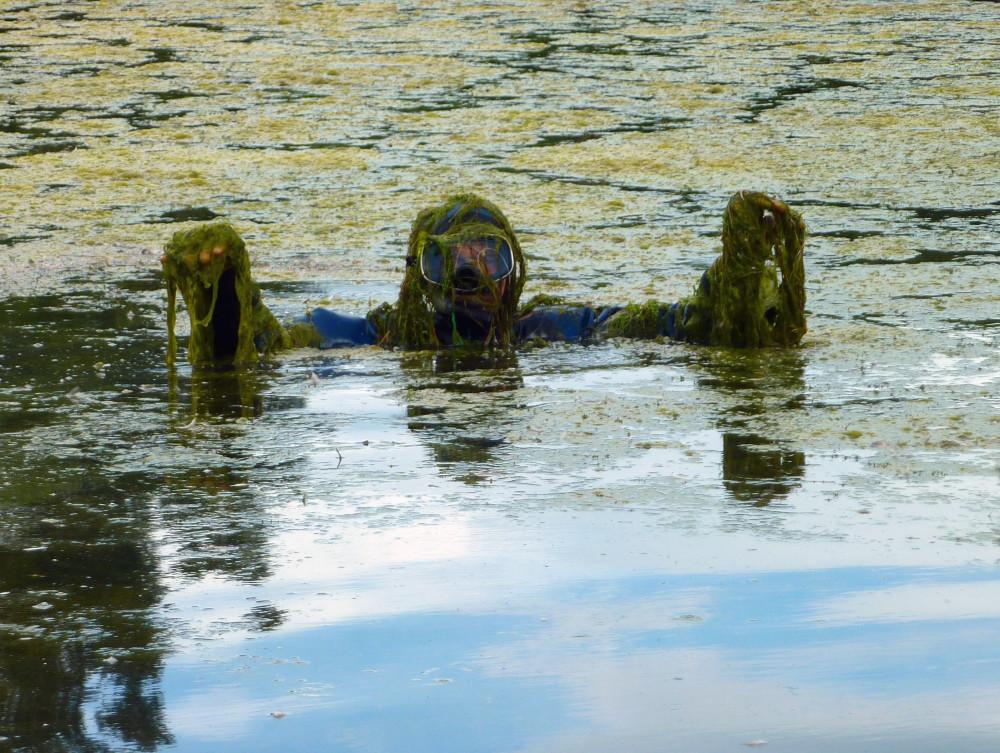 swamp_monster_centennial_lake