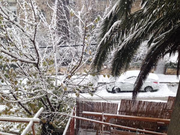 sneg 2013