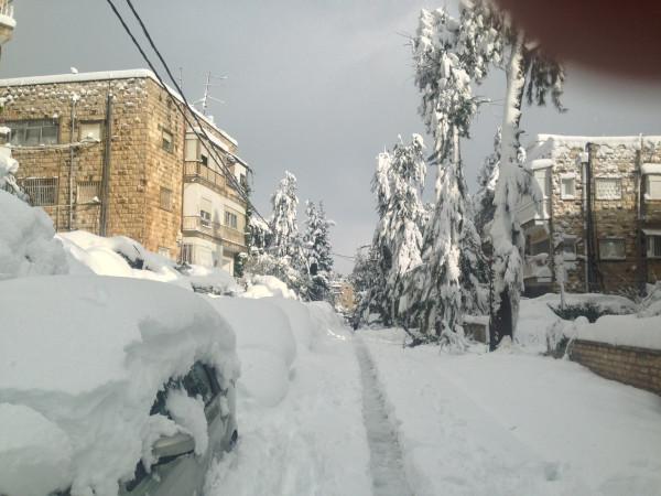 sneg-5