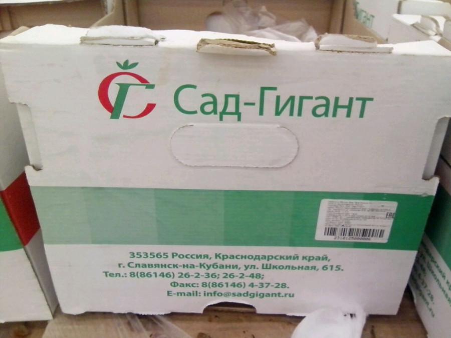 сад-гигант коробка