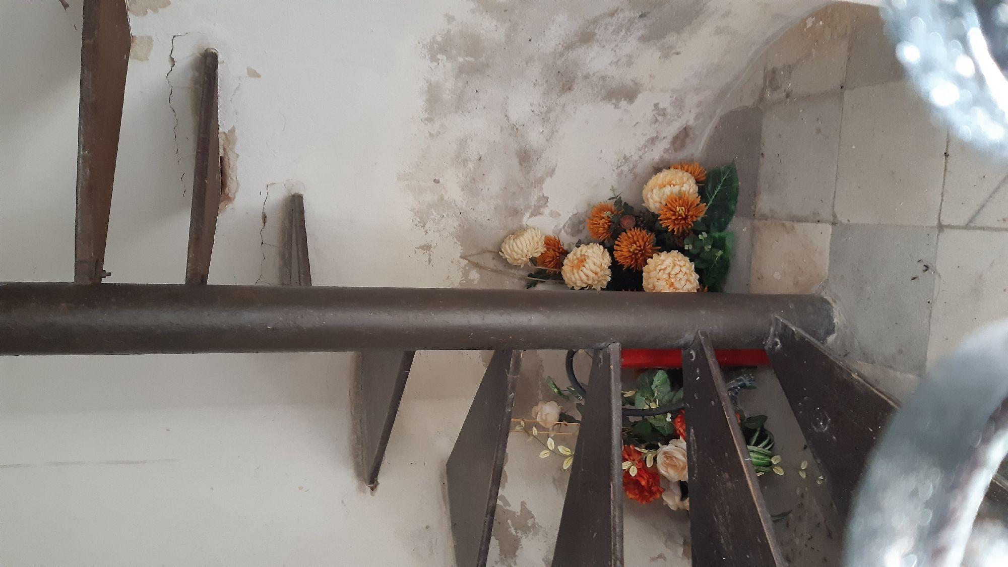 Лесенка на колокольню. Там же рядом и щёлочка для сбора пожертвований, я туда тоже бросила пару злотых