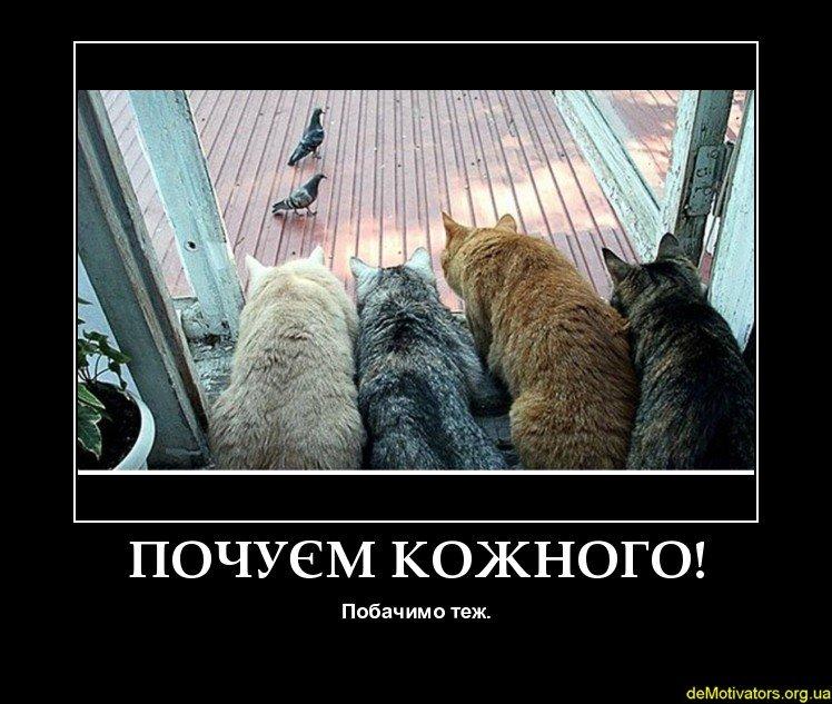 demotivators.org.ua-392828-3