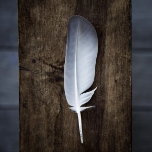 Перья птиц в магии 25318_300