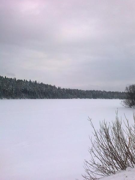 Зимой (15.01.2014)