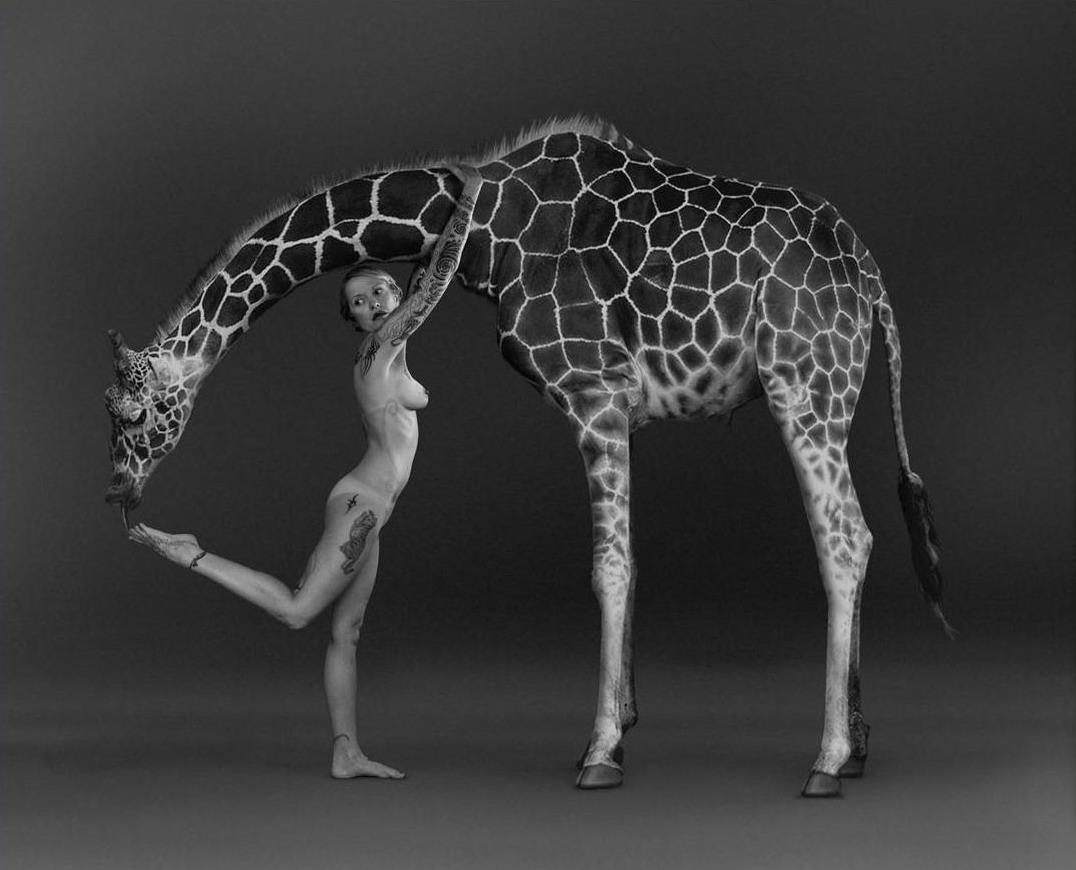 жираф-футфетишист