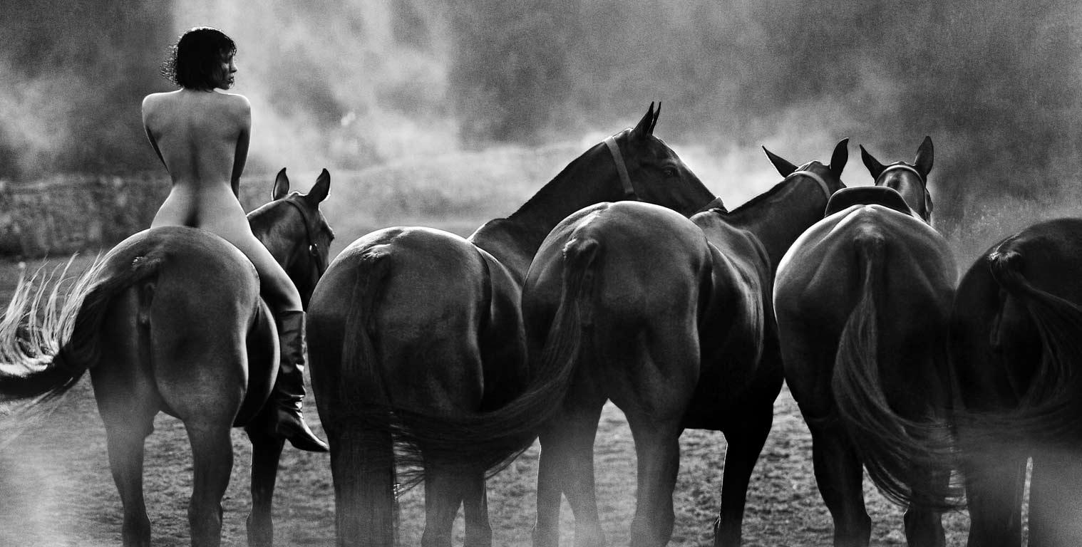 все мы немножко лошади