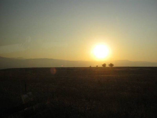 Golan 176