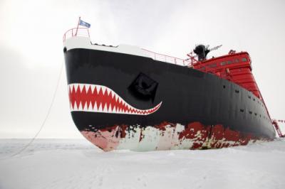 Минобороны РФ в Арктике
