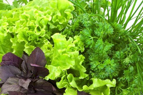 Шпинат и другая листовая зелень