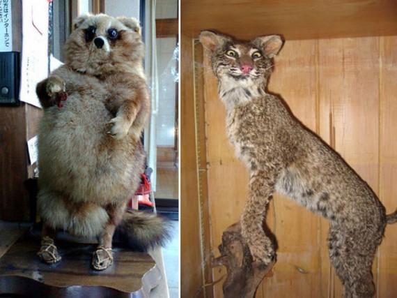 Забавные чучела животных
