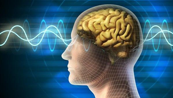 Может ли наш мозг быть заполненным