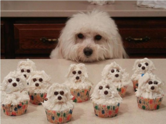 1438334887_cupcake-10
