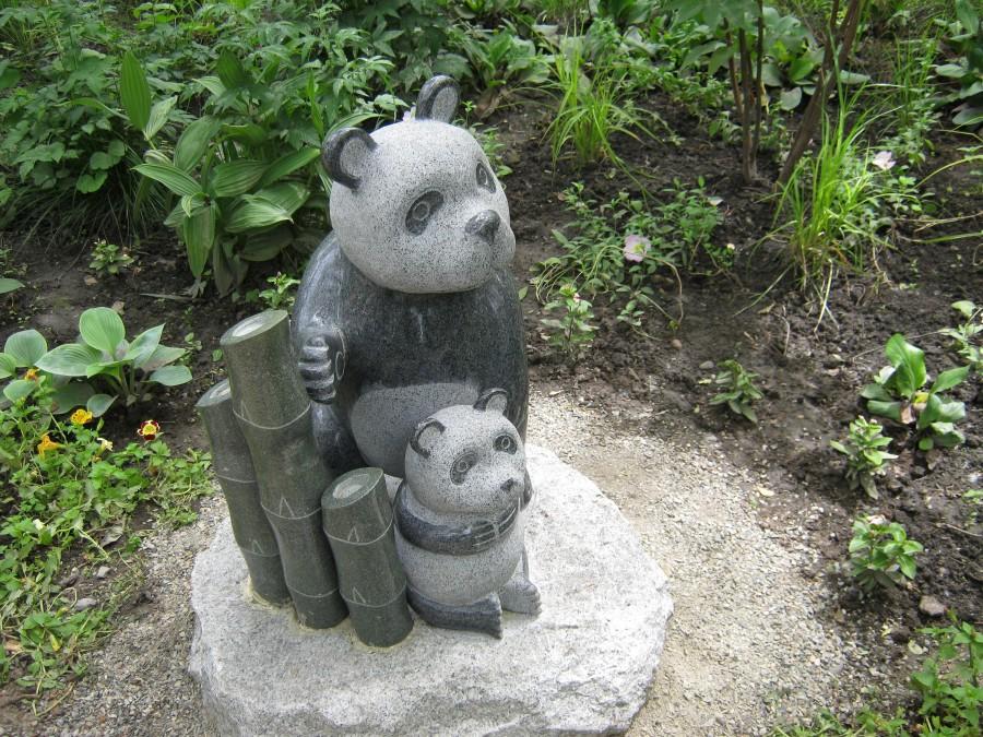 медведи и бамбук