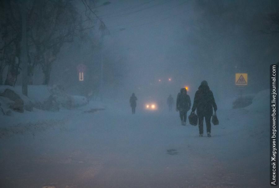 "Зомби-апокалипсис 21 века или ""запахло весной"" на Сахалине"
