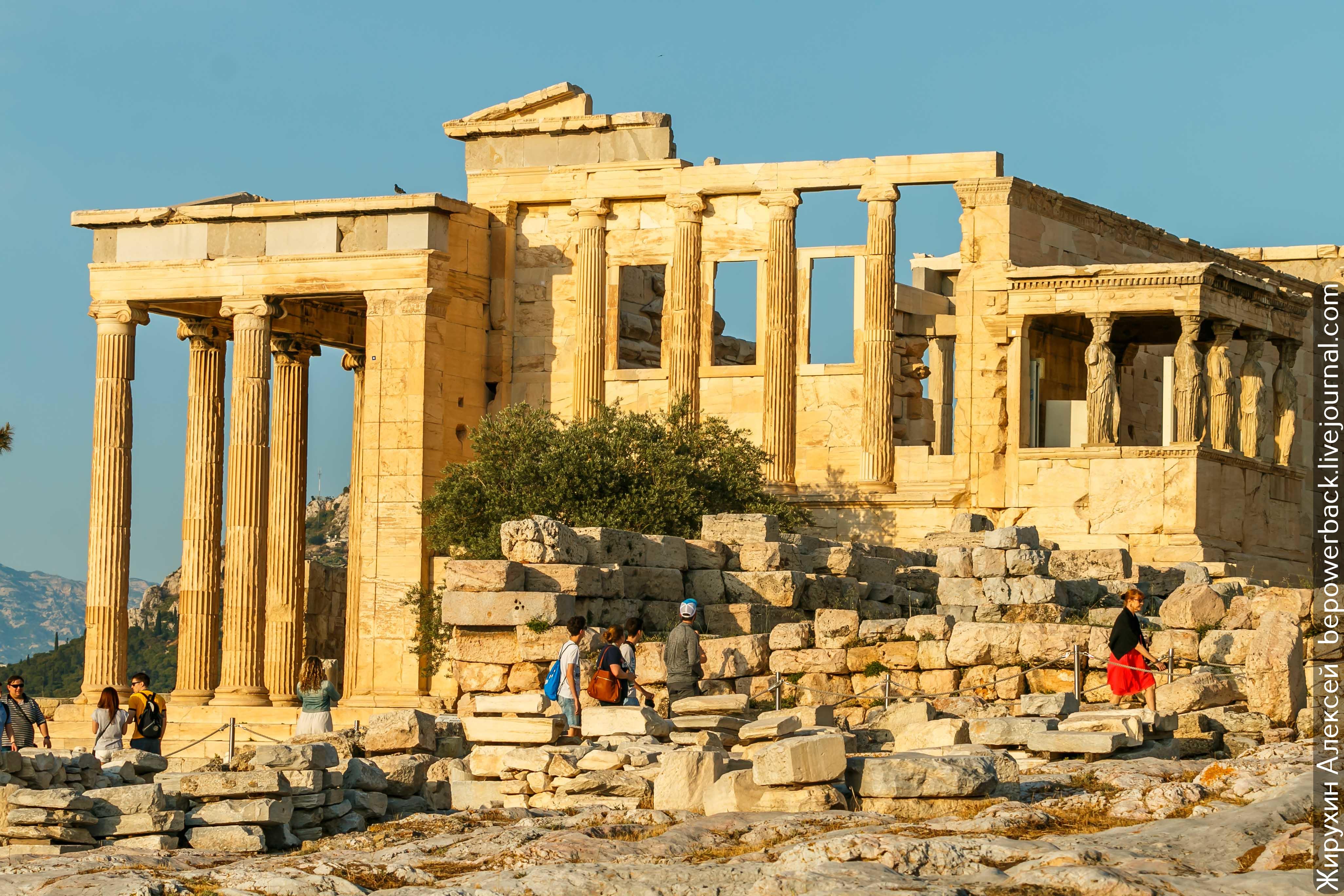чеснока история древней греции фото всего схема